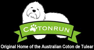 Cotonrun